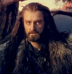Thorin Is So Handsome. The Hobbit: An Unexpected Journey. Tolkien Books, Jrr Tolkien, Hobbit 1, Snape Harry Potter, Bagginshield, Fili And Kili, The Hobbit Movies, An Unexpected Journey, Thranduil