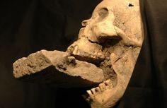 Corpos de 'vampiros' são descobertos na Polônia