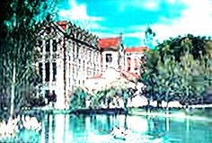 """taken from the lake in front of the school of """"Caldas da Rainha"""""""