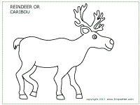 Caribou or reindeer coloring page