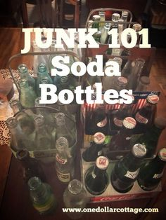 Junk 101: Soda Bottl