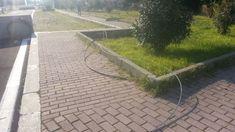 Sidewalk, Walkways, Pavement, Curb Appeal