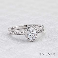 Choose hundreds of halo diamond engagement ring settings and styles at Sylvie! Our collections include seamless round and cushion halo engagement rings. Popular Engagement Rings, Round Diamond Engagement Rings, Three Stone Engagement Rings, Engagement Wedding Ring Sets, Designer Engagement Rings, Vintage Engagement Rings, Wedding Rings, Oval Diamond, Shower