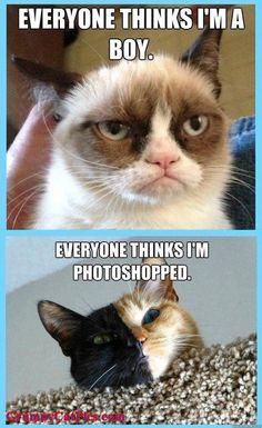 ...EVERYONE THINKS I'M PHOTOSHOPPED. tjn