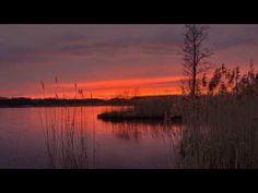 Wayne Dyer - The Best Evening Meditation Evening Meditation, Zen Meditation, Deepak Chopra Meditation, Meditation Youtube, Stress And Depression, End Of Days, Wayne Dyer, Cbt, Reflexology