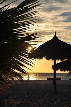 Days End Nights Begin - Aruba | Escape The Real World At The  Idyllic Caribbean Hideaway | View Rates!