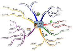 Mind Map Principles