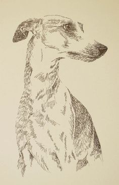 WHIPPET – Artist Kline draws dog art using only words. Signed Lithograph – Artist Will Add Your Dogs Name Into Art Free WHIPPET – Artist Kline draws dog art using only words. Signed Lithograph – Artist Will Portrait Drawing, Animal Art, Sketches, Animal Drawings, Art Drawings, Greyhound Art, Art, Lithograph, Dog Drawing