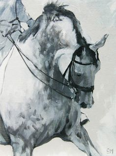 Schoolings XIII by Sally Martin Oil || equestrian equine cheval pferde caballo | BW dappled grey dressage art