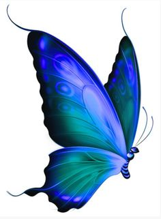 Love the shape of this butterfly