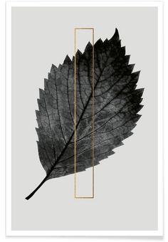 Plants I als Premium Poster von typealive | JUNIQE