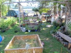 """looking from the North side into the yard. My """"garden area"""" is taking shape. The sandbox idea I am making into a water pool/fountain/pump for my yard (eventually it will feed into yard). Sticks wrapped into twine for a light screen in between the firepit and the sq. frame (pool)."""