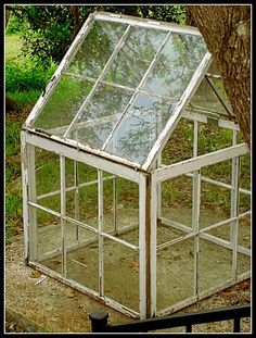 Get inspired ideas for your greenhouse. Build a cold-frame greenhouse. A cold-frame greenhouse is small but effective. Small Greenhouse, Greenhouse Plans, Greenhouse Gardening, Greenhouse Wedding, Backyard Greenhouse, Pallet Greenhouse, Old Window Greenhouse, Greenhouse Heaters, Polycarbonate Greenhouse