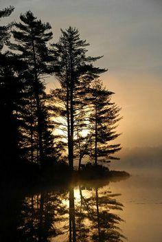 ☀Tree silhouette Mew Lake, Algonquin Provincial Park Ontario ~ Mew Lake Sunrise - Algonquin Park by Dennis Barnes* Nature Landscape, Landscape Photos, Landscape Photography, Nature Photography, Cool Landscapes, Beautiful Landscapes, Photos Black And White, Sunrise Lake, Algonquin Park