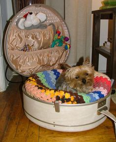 Lots of cute dog beds here. I've seen the suitcase beds before, but this one is just adorable!