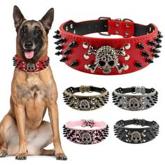 Wide Spiked Studded Leather Dog Collar Bullet Rivets With Cool Skull Pet Accessories For Meduim Large Dogs Pitbull Boxer S-XL - Dog Apparel Deals Pitbull Boxer, Dog Training Methods, Best Dog Training, Leather Dog Collars, Pet Collars, Big Dogs, Large Dogs, Puppy Obedience Training, Positive Dog Training