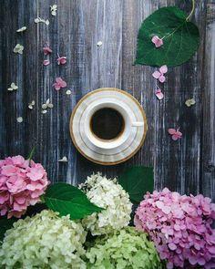 imagen descubierto por Shorena Ratiani. Descubre (¡y guarda!) tus propias imágenes y videos en We Heart It Coffee Barista, Coffee Cozy, I Love Coffee, Iced Coffee, Coffee Drinks, Coffee Time, Morning Coffee, Brown Coffee, Coffee Corner