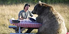 Brutus is not your average bear. | Meet Casey And Brutus: The Man/Bear Bromance