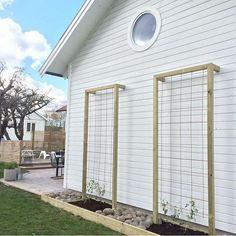39 home privacy fence for patio & backyard landscaping ideas 31 Garden Yard Ideas, Garden Projects, Backyard Patio, Backyard Landscaping, Landscaping Ideas, Dream Garden, Home And Garden, Garden Trellis, Wall Trellis