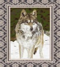 """Queen Size Blanket Standing Wolf 80"""" X 60"""""""