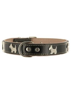 Kakadu Pet Run Scotty Run Decorative Leather Collar at Pet Shed for only $9.99 #dog #collars