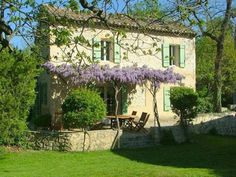Charming farm house with blooming wisteria, stone wall.