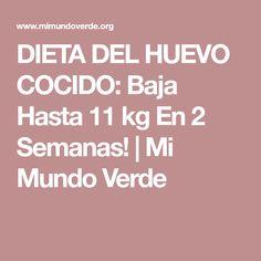 DIETA DEL HUEVO COCIDO: Baja Hasta 11 kg En 2 Semanas! | Mi Mundo Verde