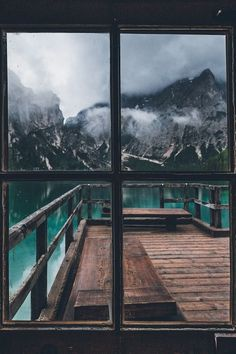 Landscape & Animals — ponderation: Through The Window by Nora Gorlitz