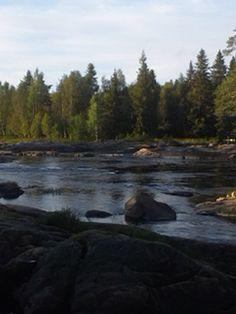 Luonnon päivä nähnyt tämän Oulussa siitä on mukava