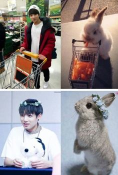 Jungkook is a bunny