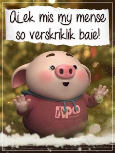 Cute Piglets, Teddy Bear, Afrikaans, Toys, Animals, Friends, Amigos, Animaux, Animales
