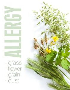 Essential Oils Help Allergies
