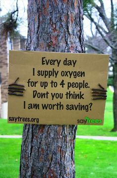 This PSA woks very well because they personified the tree by it holding the sign. I think it makes the viewer treat the tree as something living rather than something that we can just dispose of.