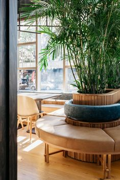 Image 5 of 50 from gallery of RYÙ / Ménard Dworkind architecture & design. Photograph by David Dworkind Banquet Seating, Booth Seating, Corner Seating, Boutique Interior Design, Interior Design Photos, Architecture Design, Restaurant Seating, Restaurant Concept, Restaurant Banquette