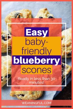 Using just 3 ingredients at the base, this scone recipe can be easily adapted to other fillings not only fruit, but also cheese or veggies. It's quick, simple and great for kids of all ages. It is also baby friendly and suitable from 6 months and up. Baby Meals, Kid Meals, Dinners For Kids, Meals For One, Fun Snacks For Kids, Healthy Meals For Kids, Easy Healthy Recipes, Baby Food Recipes, Baby First Foods
