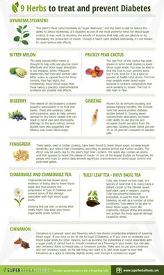 9 Herbs To Treat and Prevent Diabetes