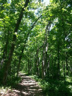 Blue Mound State Park - WI