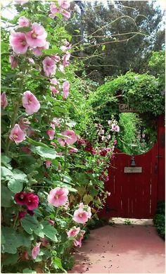 Peeking through the garden gate....