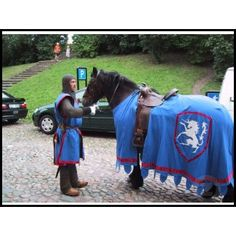 Costumes for Horses for Horse Shows, Halloween or Parades Horse Halloween Costumes, Dog Costumes, Costume Ideas, Horse Fancy Dress Costume, Medieval Horse, Medieval Weapons, Renaissance Festival Costumes, Horse Therapy, Funny Animal Pictures