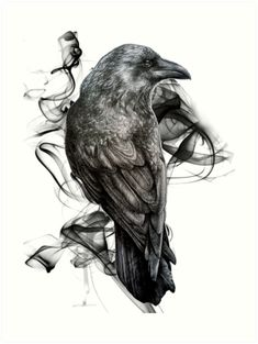 Crows Drawing, Bird Drawings, Gothic Drawings, Crow Art, Raven Art, Kunst Tattoos, Bild Tattoos, Tattoo Sketches, Drawing Sketches