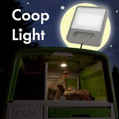 The Coop Light is a wonderfully practical addition to your chicken coop as it helps to encourage chickens to go back into their coop or run when it gets dark. Chicken To Go, Chicken Runs, Automatic Chicken Coop Door, Pet Chickens, Easy, Simple, Building, Chicken Coops, Buildings