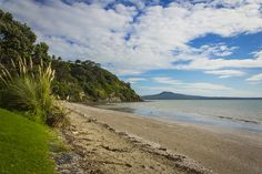 Karaka-Bay-Auckland-Best-Beaches-New-Zealand 6 best secret beaches in NZ