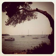 Ile de Lérins #Cannes