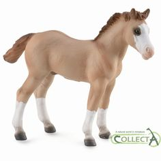 Find the CollectA Quarter Foal Red Dun at MiniZoo. Hand-painted horse foal  figurine perfect for your prehistoric collection. Buy CollectA horse models  from ... c7370ad7261