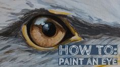 A quick tutorial on how to paint an Eagle's Eye using acrylic paints. The whole painting took about 20 minutes, this is sped up with some voice over to give . Eagle Painting, Rock Painting, Eagle Face, Eagle Drawing, Animal Paintings, Canvas Paintings, Canvas Art, Denim Art, Bird Art