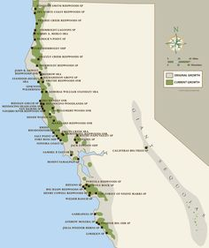 California coastal redwood parks cali road trips Pinterest