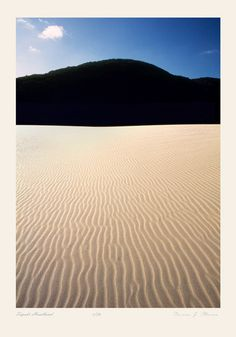 Photograph titled Tepaki Headland. Tepaki Stream - Far North New Zealand. Converging ripples of bright golden sand, so bright that a forest covered headland forms a solid black slab.