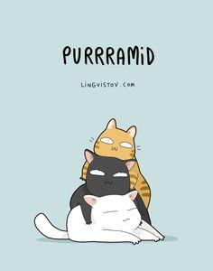 Purramid. So cute!                                                                                                                                                      More