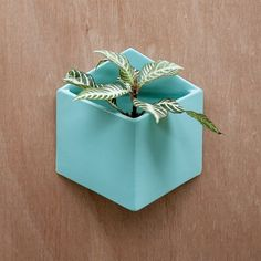 Pocket Wall Planter - Turquoise