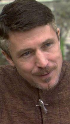 This man is perfect. Sansa And Petyr, Sansa Stark, Arya, Peter Baelish, Aidan Gillen, Maze Runner, Prompt, Sherlock, Fangirl